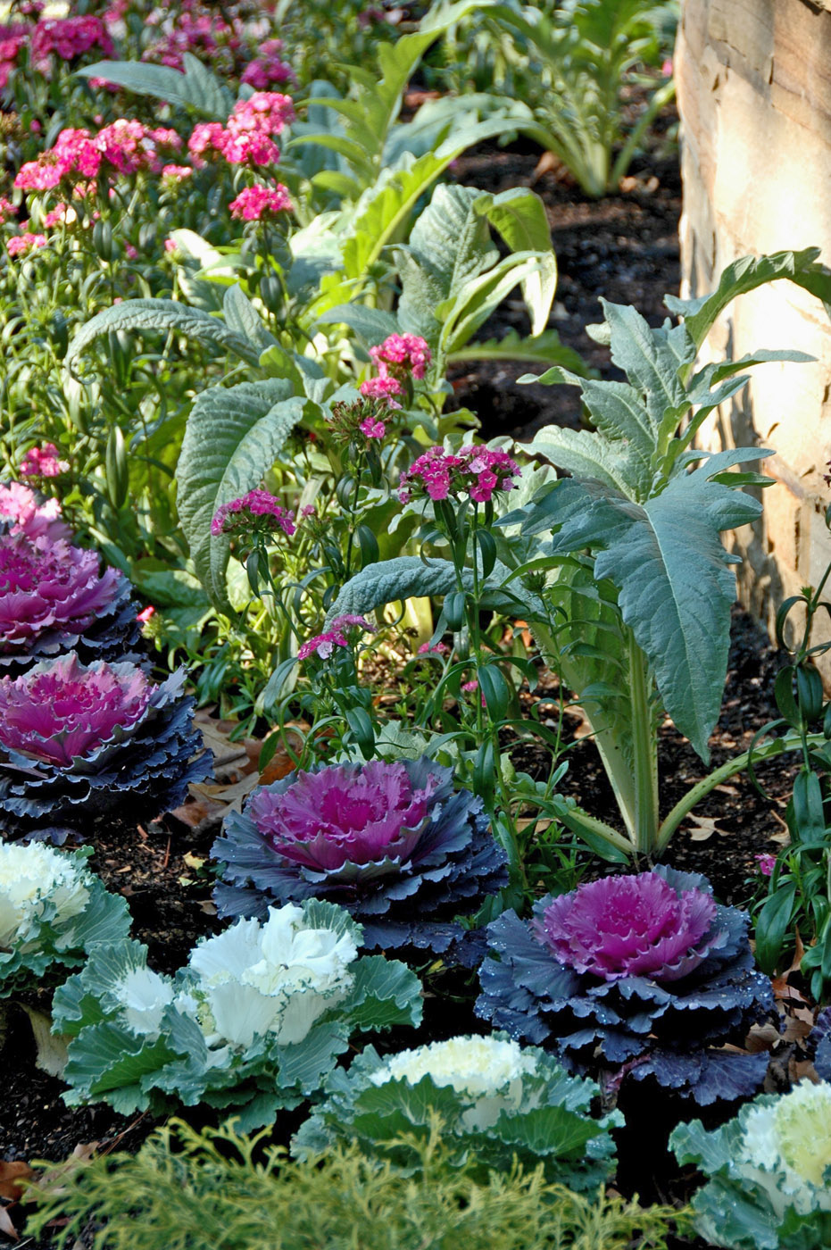 3 Aesthetic Ways To Implement Food Gardens At Your Home