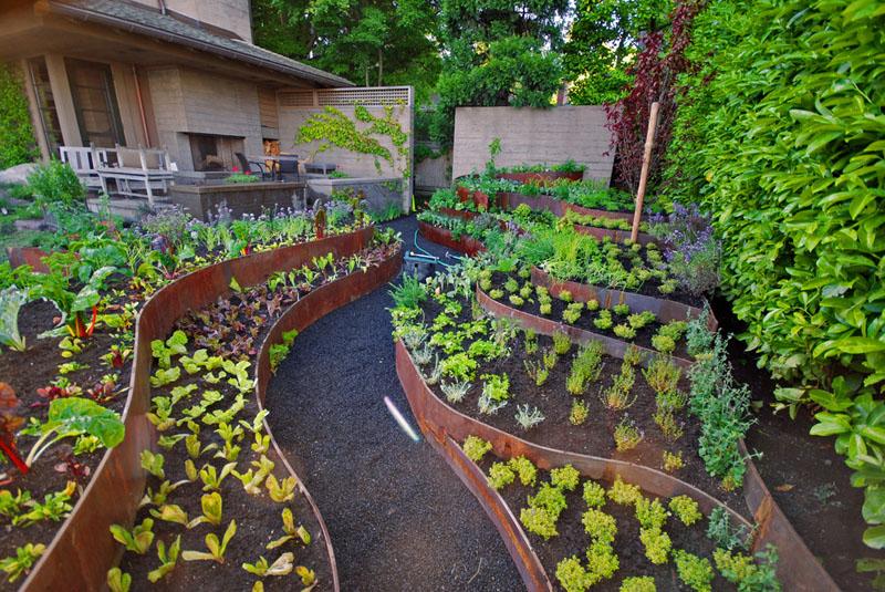 Terraced backyard garden